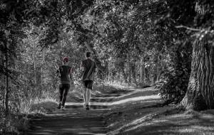 ZielonaGora-bieganie